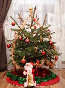 Tannenbaum - Jahr 2013