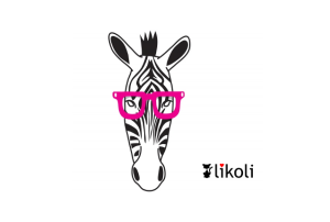 Zebra Style - T-Shirt von likoli