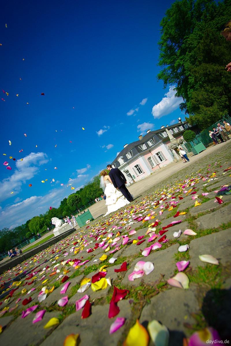 Rosenregen Hochzeit Schloss Benrath