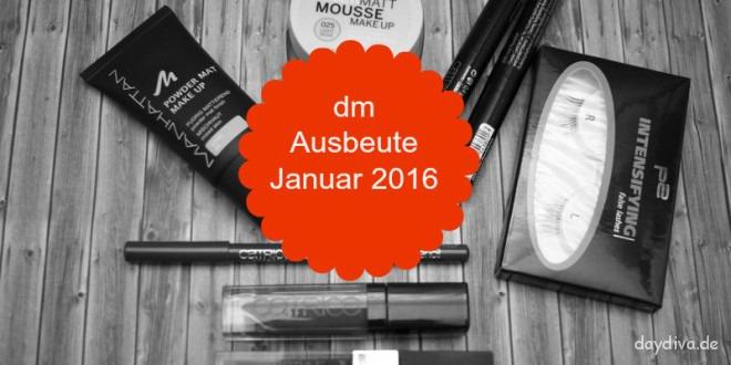 dm Ausbeute Januar 2016