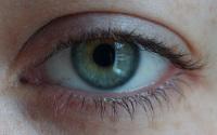 Augenfarbe - Grün
