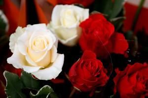 Blumenstrauss Rosen rot weiss