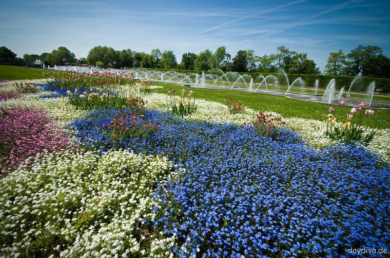 Frühjahrsbepflanzung am Parkeingang Nordpark Düsseldorf