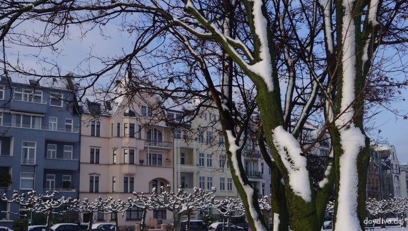 Verschneide-Bäume-Düsseldorf